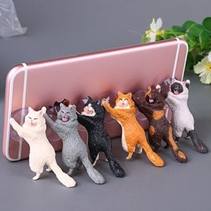 6Cats, Hot Wholesale, Warehouse, Sale, Bargain, Bargain Basement, Hot Deals, Deal, Hot, Buy, Shop , Wholesale, Save, Savings, cart, Shopping