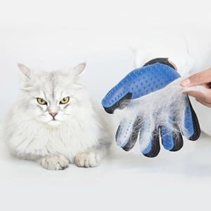 Pet Grooming Glove for Your Star Pet